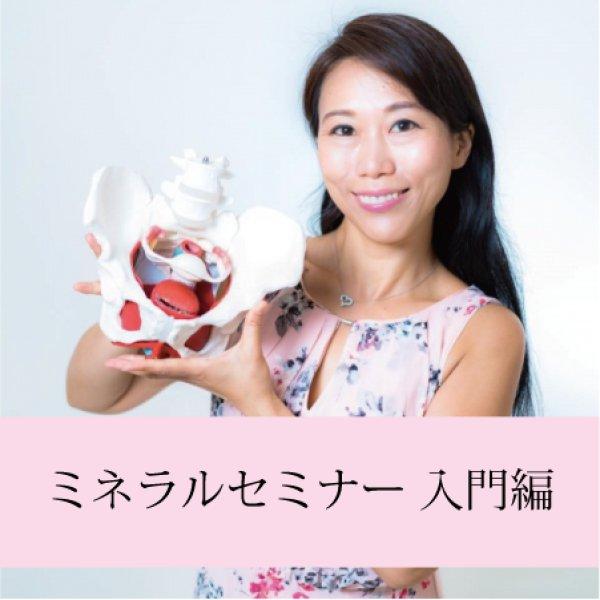 画像1: 「ミネラルセミナー 入門編」録画セミナー (1)