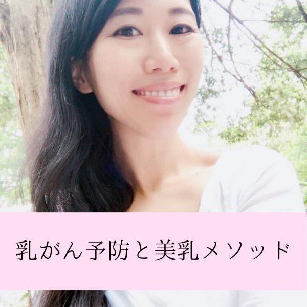 画像1: 「乳がん予防と美乳メソッド」録画セミナー (1)